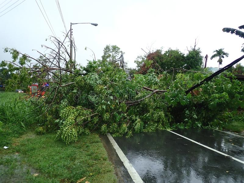 El polo eléctrico caida y del desplome después de una tempestad de truenos y de fuertes lluvias fuertes en Penampang, Kota Kinaba foto de archivo