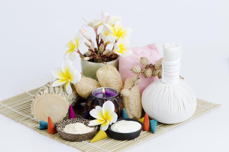 El polvo y el yogur de Thanakha para quieren suavidad y blanco de la piel fotografía de archivo libre de regalías