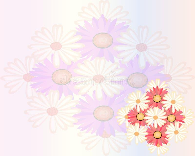 El prado del verano con la margarita realista, manzanilla florece en fondo transparente libre illustration