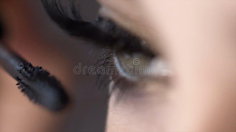 El primer aplica el rimel en las pesta?as del ojo femenino hermoso acci?n Longitud incre?ble del latigazo con efecto estupendo de fotografía de archivo libre de regalías