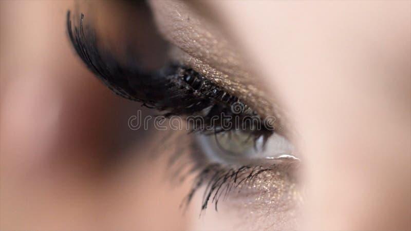 El primer aplica el rimel en las pesta?as del ojo femenino hermoso acci?n Longitud incre?ble del latigazo con efecto estupendo de fotografía de archivo