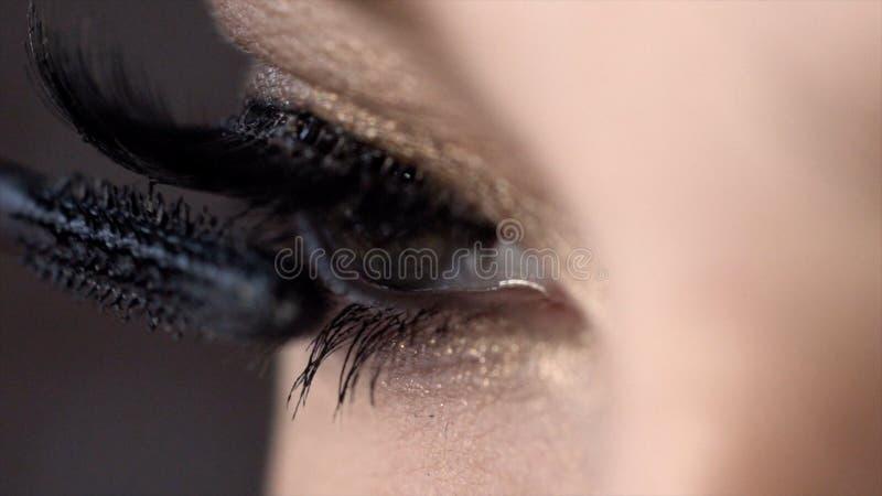 El primer aplica el rimel en las pesta?as del ojo femenino hermoso acci?n Longitud incre?ble del latigazo con efecto estupendo de foto de archivo libre de regalías