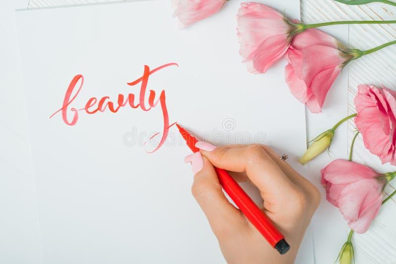 El primer de las manos del calígrafo escribe belleza de la palabra en el Libro Blanco Inscripción de letras adornadas ornamentale imagen de archivo