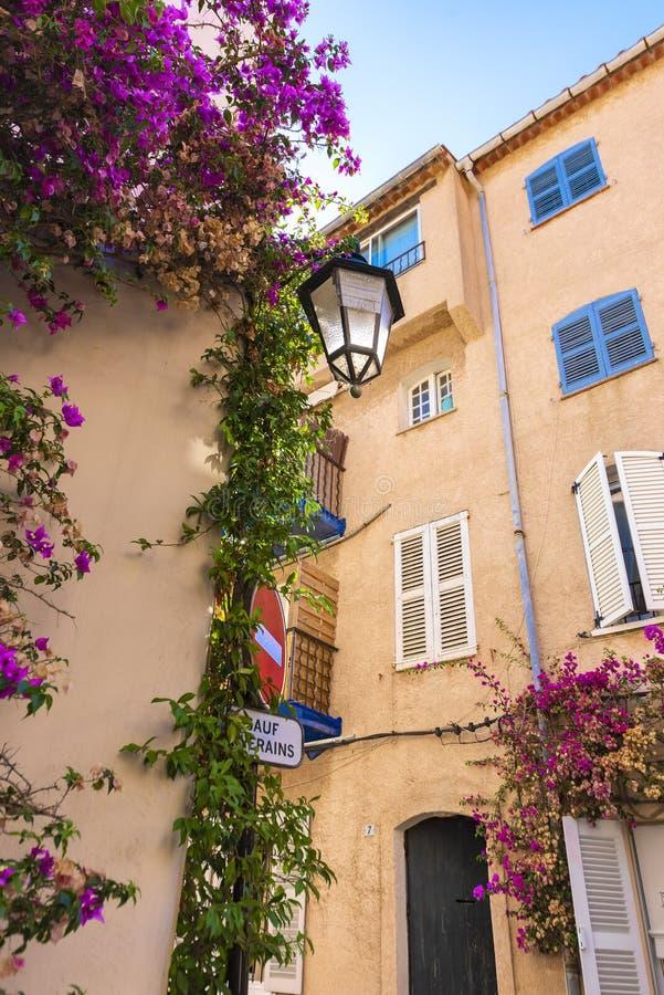 El primer de una esquina mediterránea francesa típica, con sus fachadas y edificios rosados, los zarcillos con el oliander púrpur foto de archivo