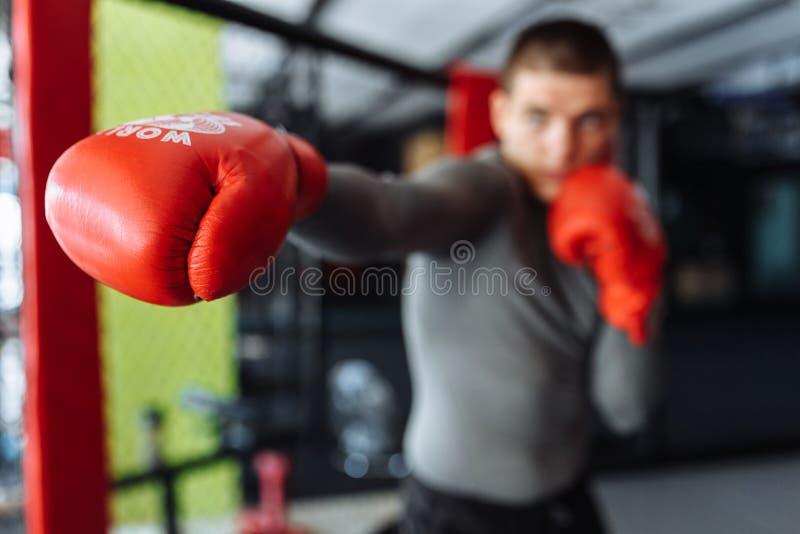 El primer del guante de boxeo, el boxeador de sexo masculino enganchó al entrenamiento en el gimnasio, en una jaula para una luch imagen de archivo