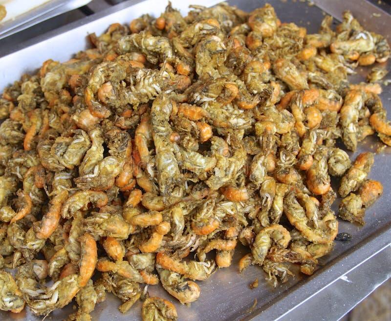 El primer frito del camarón imágenes de archivo libres de regalías