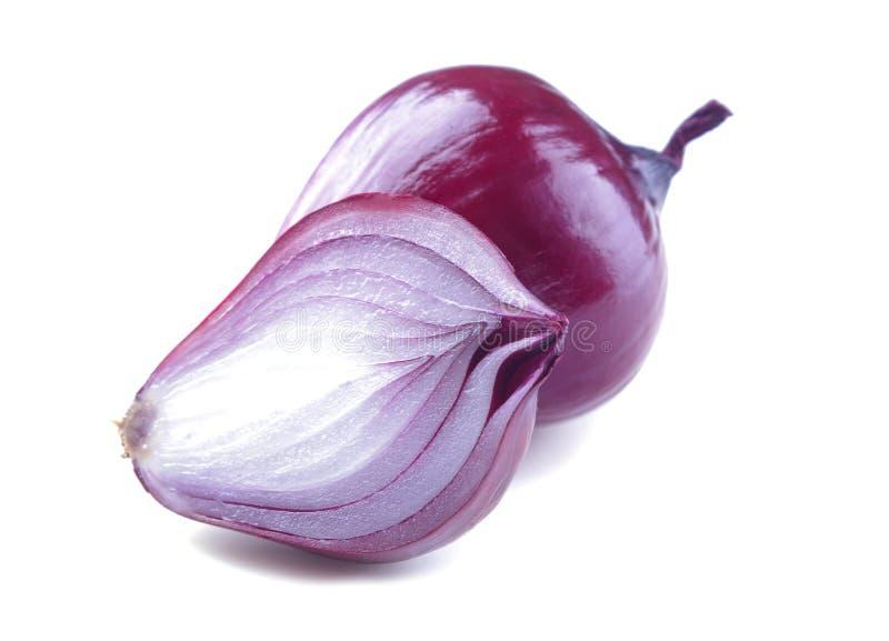 el primer hermoso de la cebolla roja en blanco aisló el fondo Verduras fotos de archivo libres de regalías