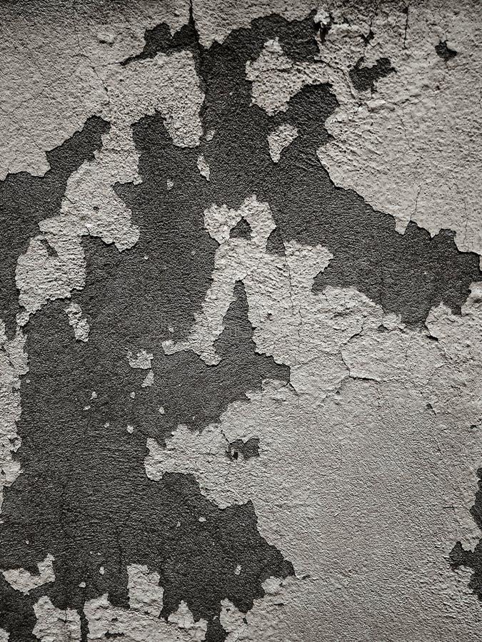 El primer se agrietó pelando la pintura en el muro de cemento del cemento causado por la precipitación y la humedad con con los m imagen de archivo libre de regalías