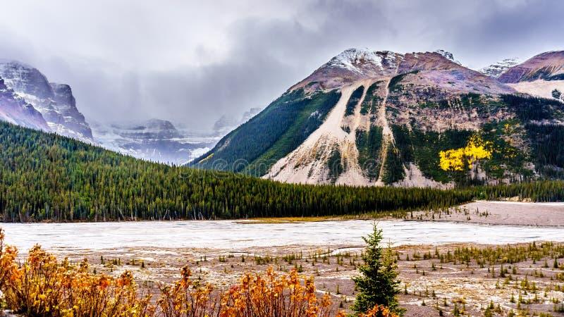 El principio del río de Athabasca cerca de su origen en el glaciar de Athabasca imagen de archivo libre de regalías