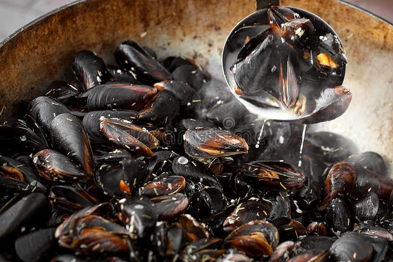 El proceso de preparar los mejillones en un cazo grande Comida de la calle con los mariscos fotos de archivo libres de regalías