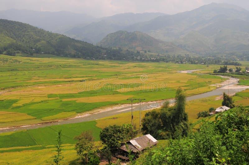 El pueblo de Hmong entre el arroz coloca en Sapa fotografía de archivo libre de regalías