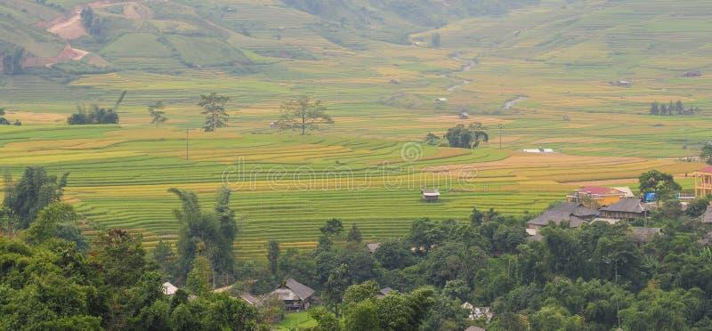 El pueblo de Hmong entre el arroz coloca en Sapa fotos de archivo libres de regalías