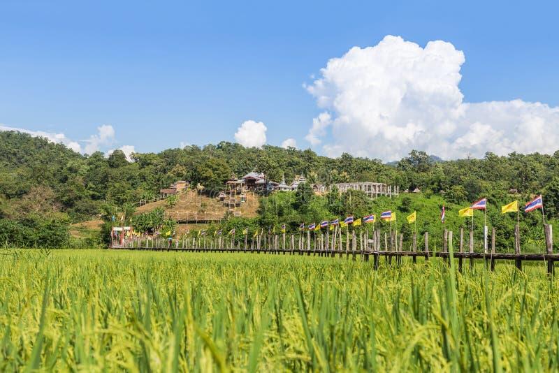 El puente de bambú más largo de los pae de las pinzas de Zu en Mae Hong Son Tailandia fotos de archivo libres de regalías