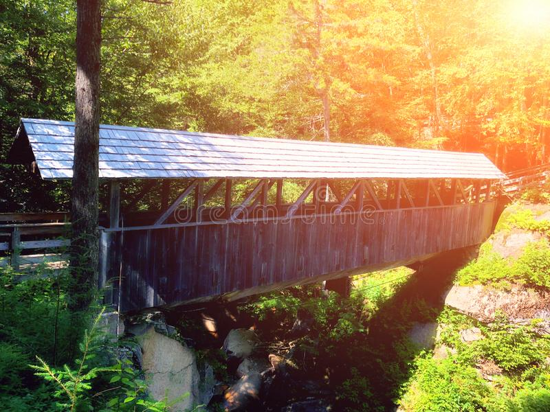El puente de madera del pino del centinela de la garganta del saetín foto de archivo libre de regalías