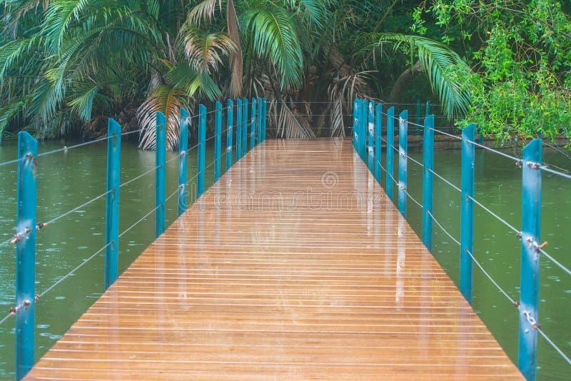 El puente de madera largo cruza encima el lago en el parque público rodeado con natural verde fotografía de archivo libre de regalías