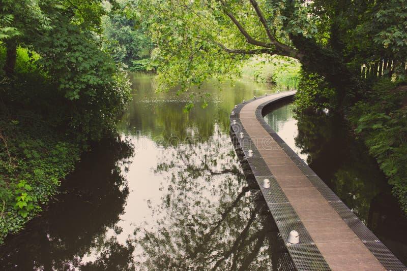 El puente en el parque se descoloró Calzada sobre el agua en el bosque filtrado Trayectoria de la curva sobre la charca en parque fotografía de archivo libre de regalías