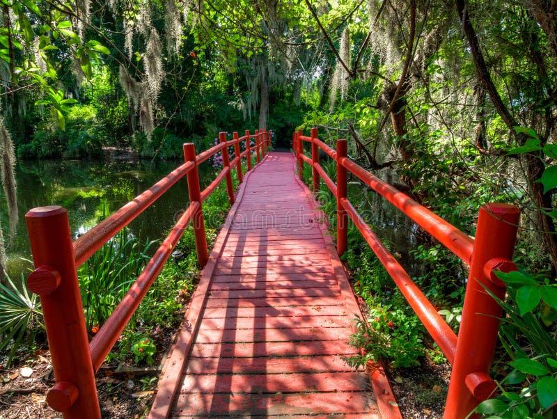 El puente rojo sobre el agua, con el musgo cubri? ?rboles Charleston, SC imagen de archivo libre de regalías