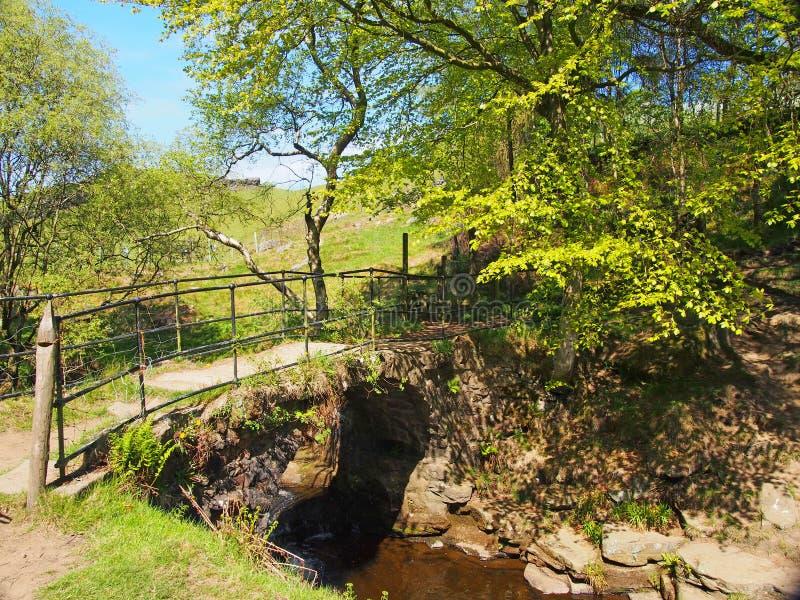 El puente viejo del caballo de carga en el agujero del lumb cae una cascada en arbolado en el decano del crimsworth cerca de peck foto de archivo