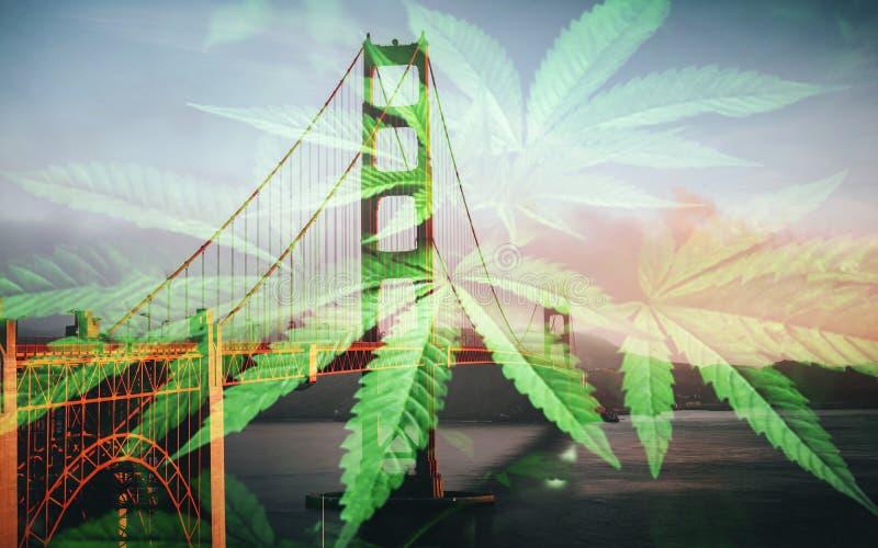 El puente y la marijuana de la puerta de San Francisco Cannabis Art With Golden se va de alta calidad fotografía de archivo libre de regalías