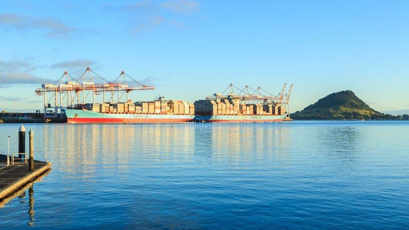 El puerto ocupado de Tauranga, Nueva Zelanda fotografía de archivo