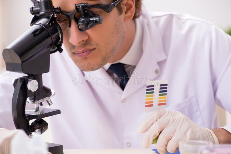 El químico en el laboratorio que comprueba con las tiras del pH imagenes de archivo
