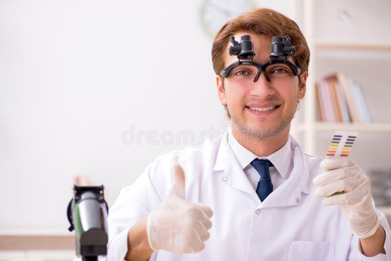 El químico en el laboratorio que comprueba con las tiras del pH fotos de archivo libres de regalías