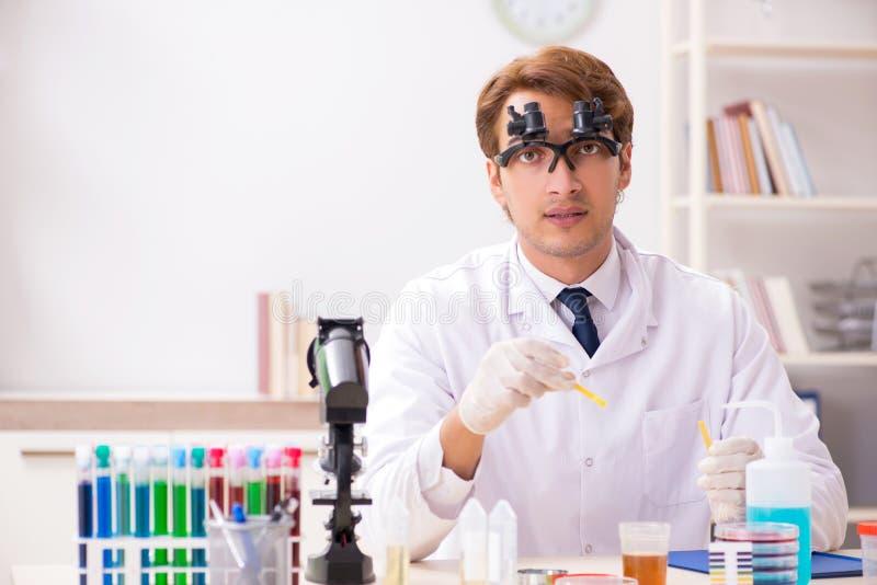 El químico en el laboratorio que comprueba con las tiras del pH imagen de archivo