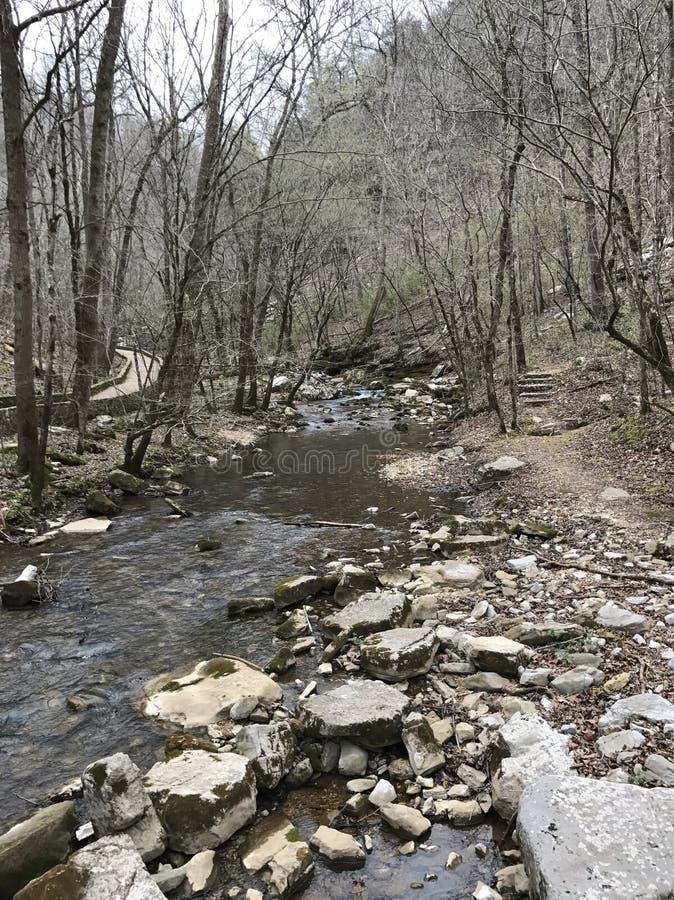 El río Arkansas con las rocas y los árboles imagen de archivo libre de regalías
