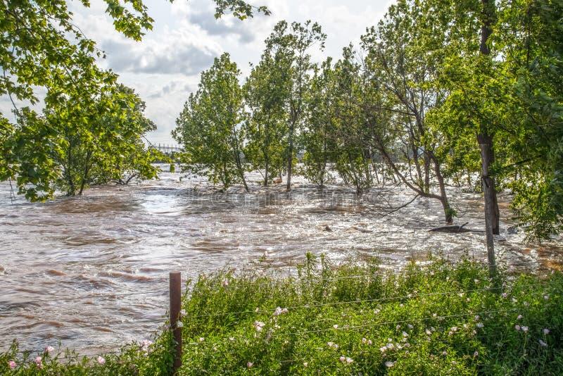 El río Arkansas turbulento e inundado hinchado como corre con la AUTORIZACIÓN de Tulsa con los árboles hacia fuera en agua y regi fotografía de archivo libre de regalías