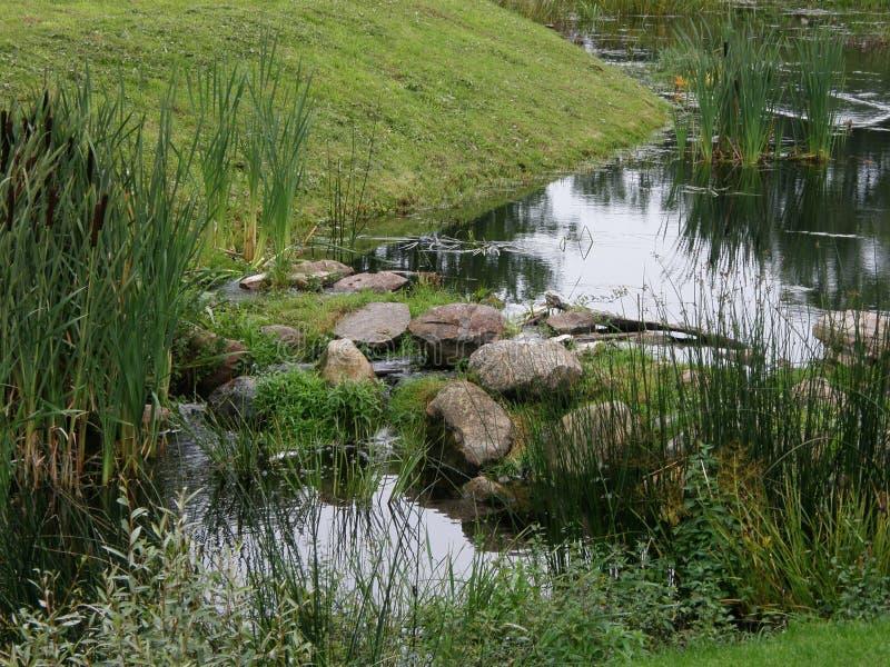 El río atraviesa una pequeña cascada, Estonia foto de archivo