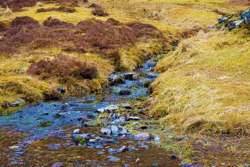 El río de Coe en las montañas escocesas fotografía de archivo