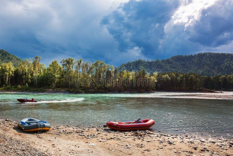 El río de Katun en el verano Las montañas de Altai, Sib meridional imagen de archivo libre de regalías