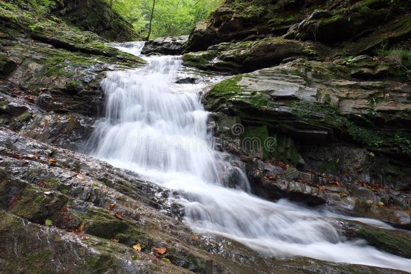 El río de la montaña está con las cascadas y las rocas imagen de archivo