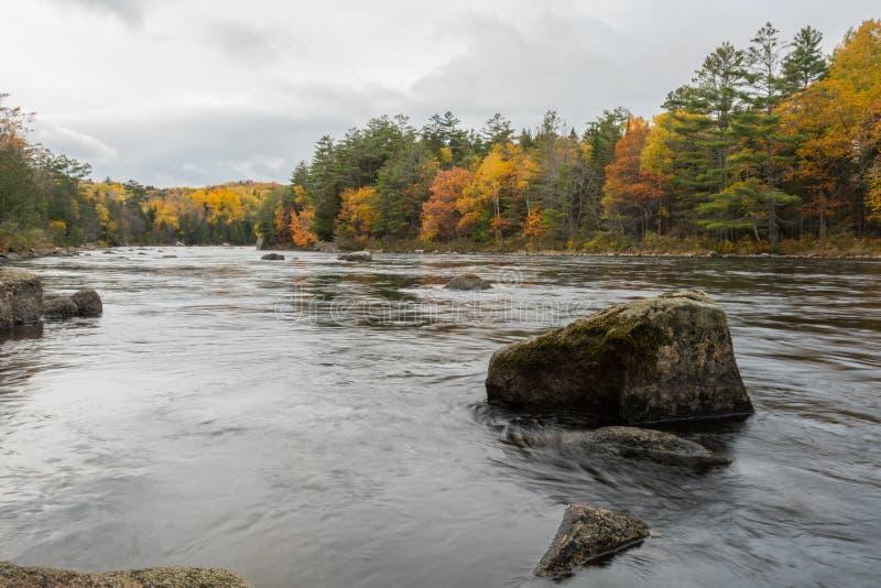 El río de Penobscot fluye alrededor de los cantos rodados grandes foto de archivo libre de regalías