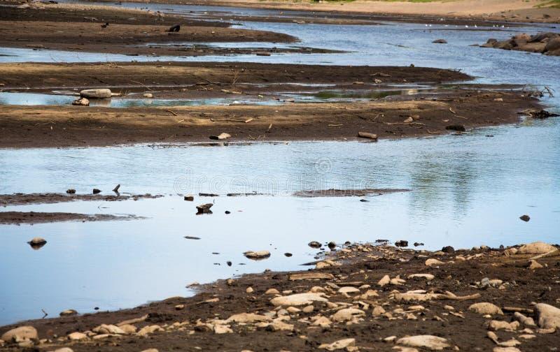 El río es bajo y muy contaminado por la gente Hay mucha basura y la basura en la charca y ésta se ha convertido en un probl enorm imagen de archivo libre de regalías