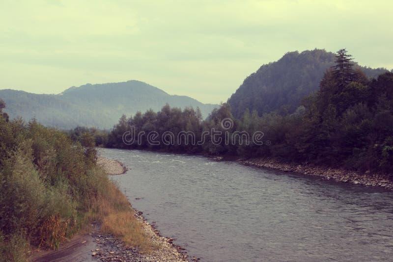 El río es en un fondo las montañas de Cárpatos fotos de archivo