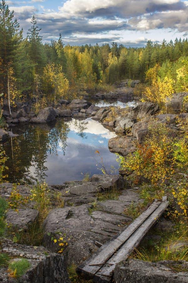 El río fluye entre las rocas y el bosque del taiga imágenes de archivo libres de regalías