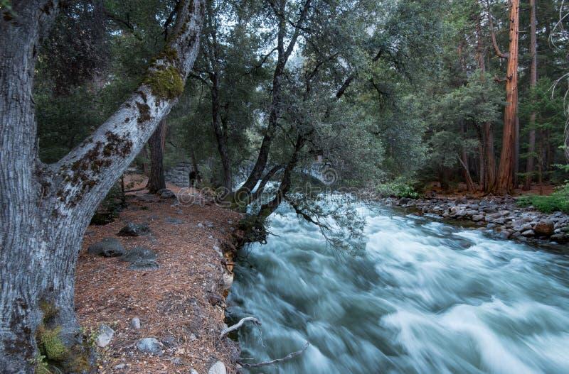 El río inundado de Merced en primavera fotografía de archivo