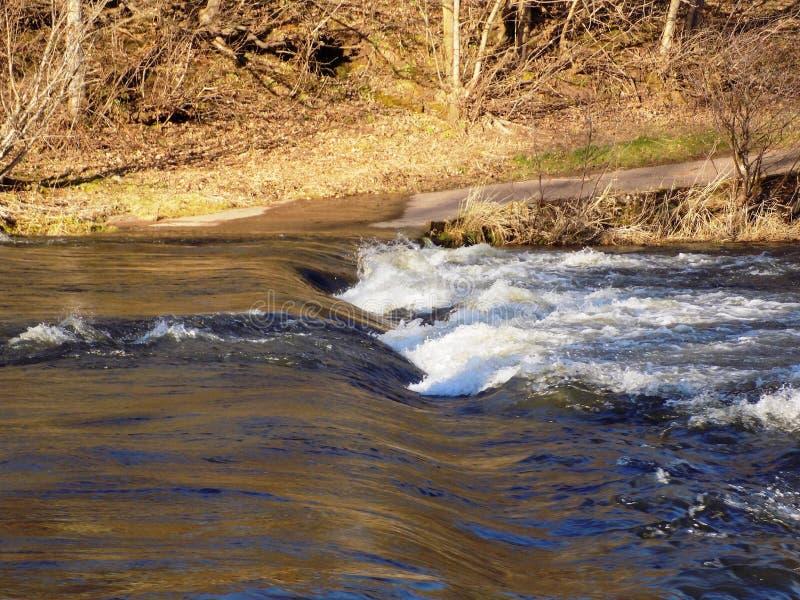 El río labra en y otros, Northumberland Reino Unido imagen de archivo libre de regalías