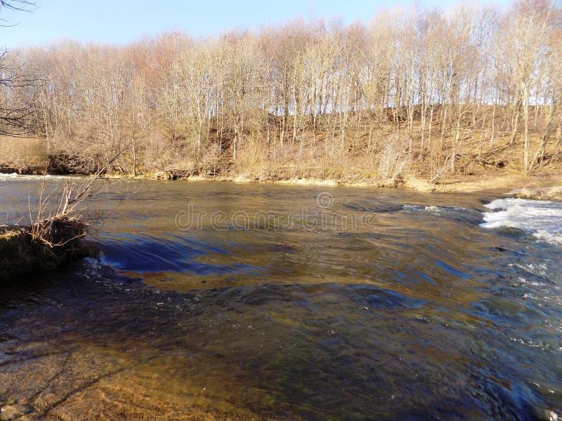 El río labra en y otros, Northumberland Reino Unido foto de archivo