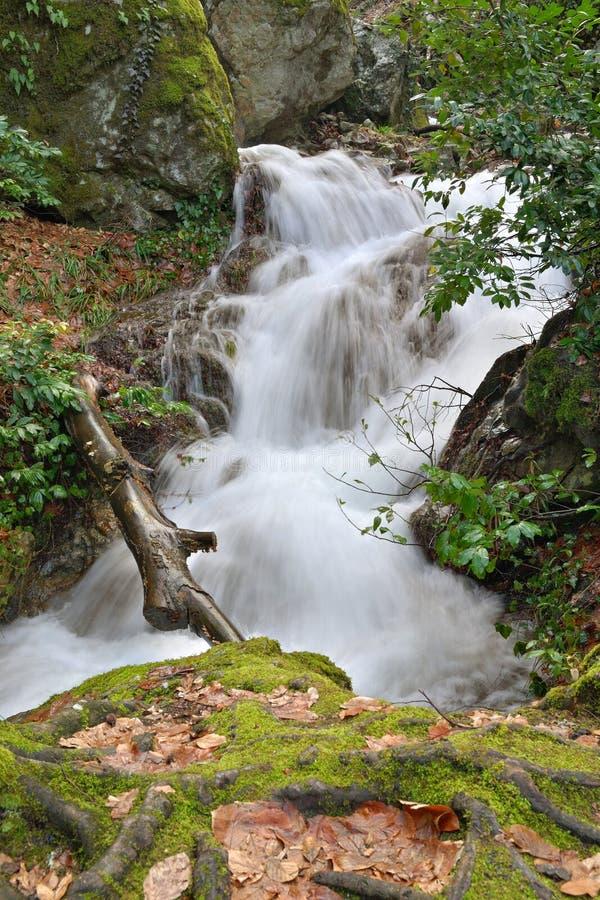 El río salvaje fotografía de archivo