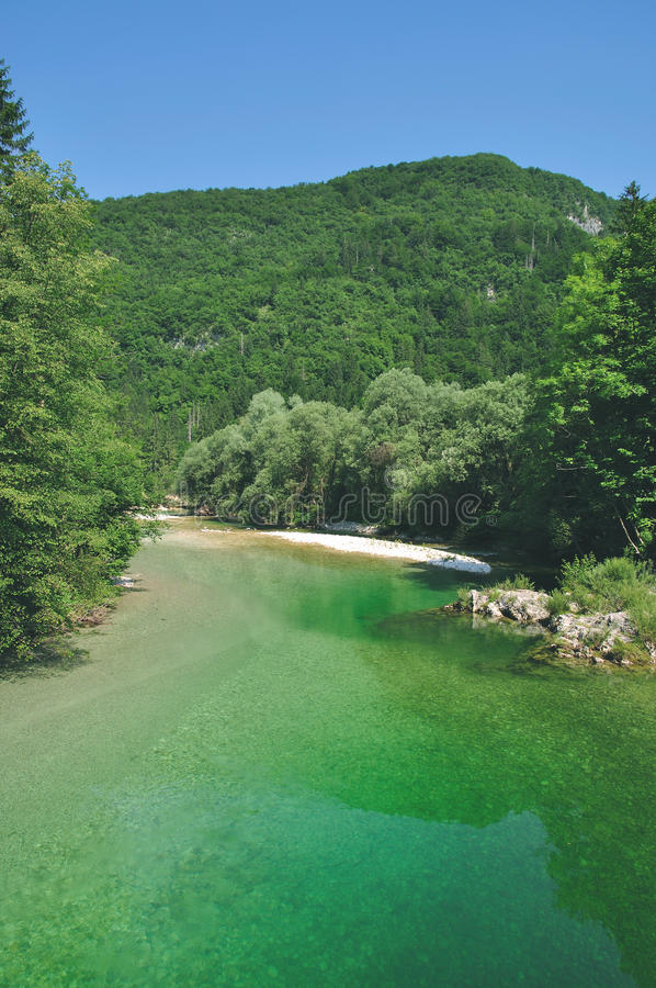 El río Sava, lago Bohinj, Eslovenia foto de archivo libre de regalías