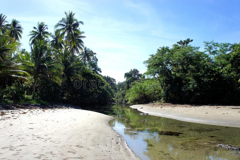 El río tropical silencioso resuelve el mar Isla de Palawan fotografía de archivo libre de regalías