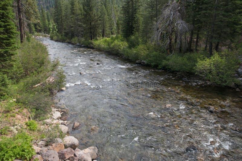 El río Truckee cerca de Squaw Valley foto de archivo libre de regalías