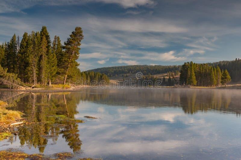 El río Yellowstone y reflexiones de los árboles fotos de archivo