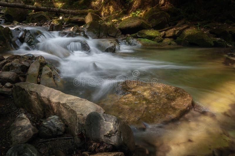 El r?o de la monta?a atraviesa un bosque de hadas verde foto de archivo libre de regalías