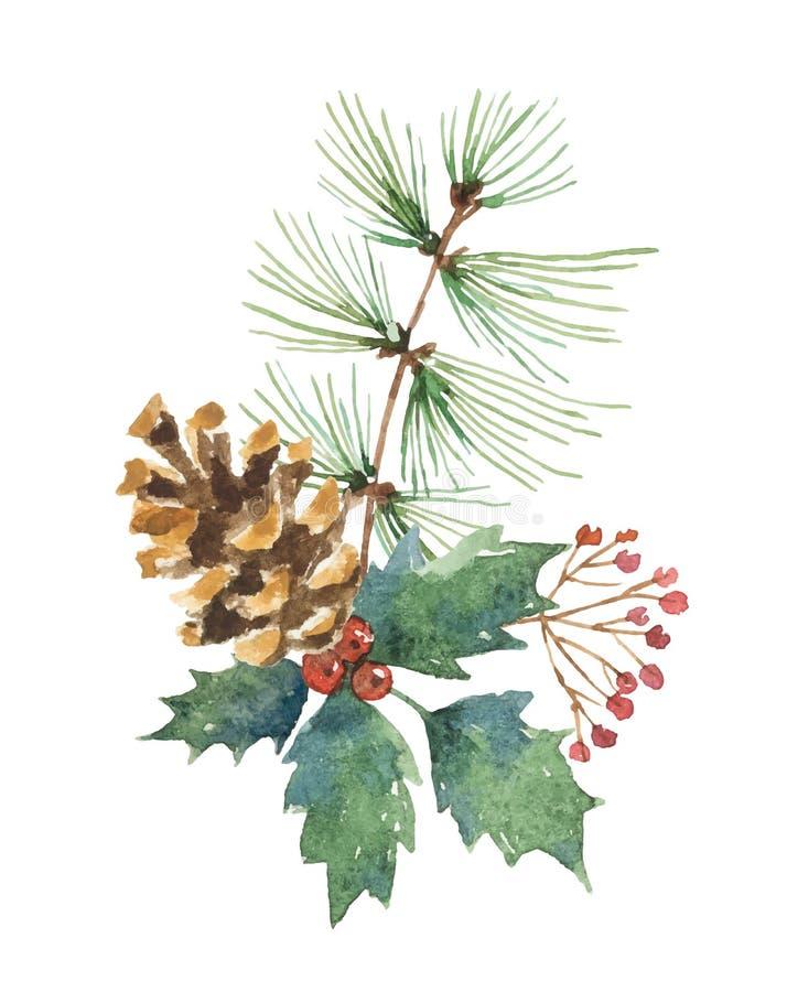 El ramo de la Navidad del vector de la acuarela con el cono del pino, abeto ramifica y se va stock de ilustración