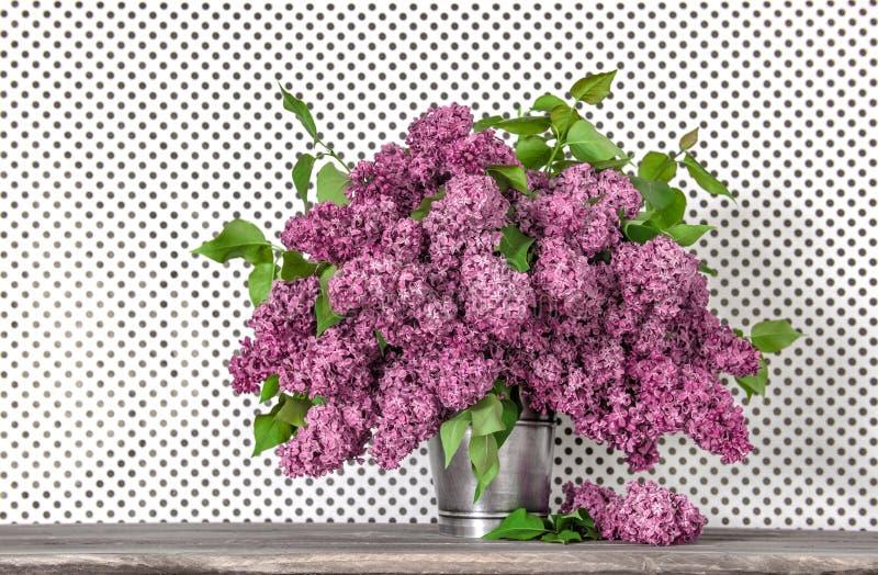 El ramo de lila florece en fondo del papel pintado del lunar imagenes de archivo