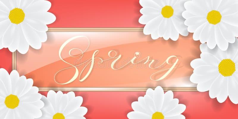El ramo de margarita blanca o de gerber florece el fondo Primavera o fondo del verano, marco de cristal, ilustración del vector