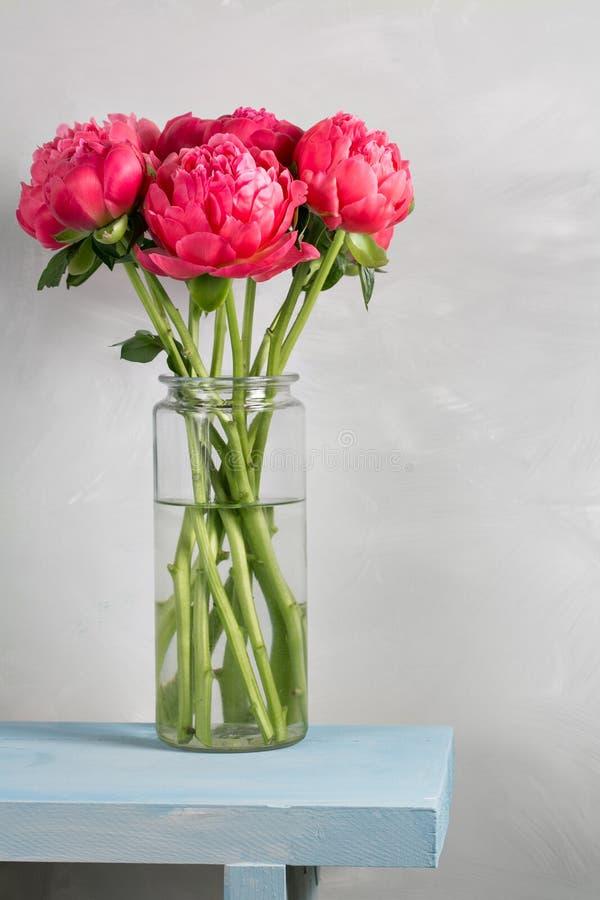 El ramo de peonía coralina fresca florece en el florero de cristal en la tabla de madera azul y el fondo gris Grado de flores Cor imagenes de archivo